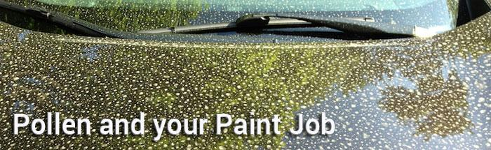 Pollen and Your Paint Job: 4 Defensive Tips to Protect Your Finish